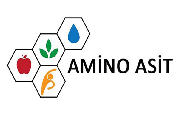 amino asit nedir