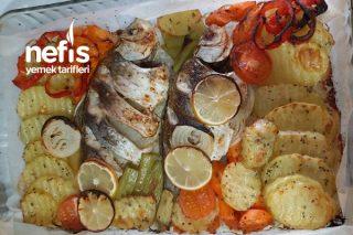 Fırında Sazan Balığı Tarifi