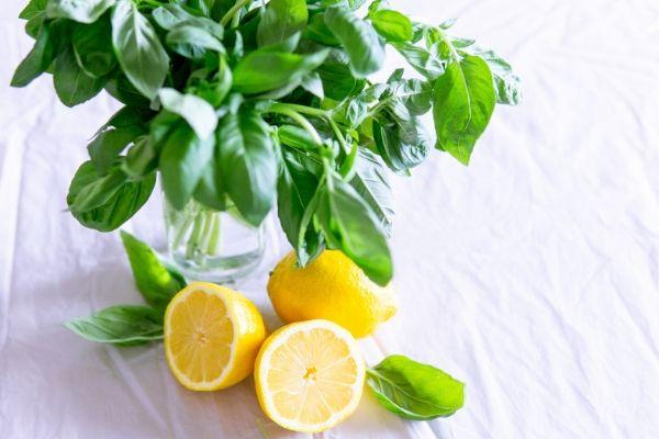 Gıda Zehirlenmesine İyi Gelen Evde 8 Doğal Tedavi Tarifi