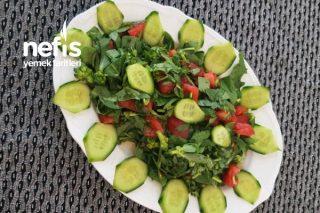 Semiz Otu Salatası (Soğukluk Salatası) Tarifi