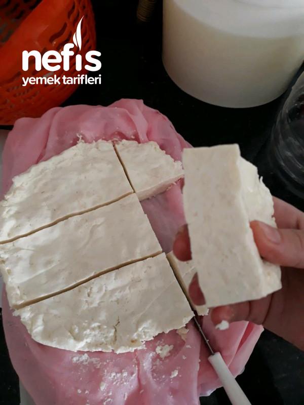 Maya Kullanmadan Sutten Peynir Yapimi (Videolu)