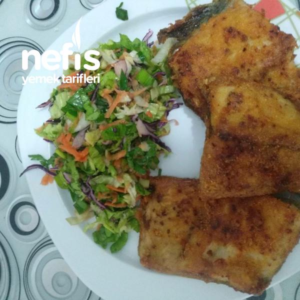 Somun Balığı