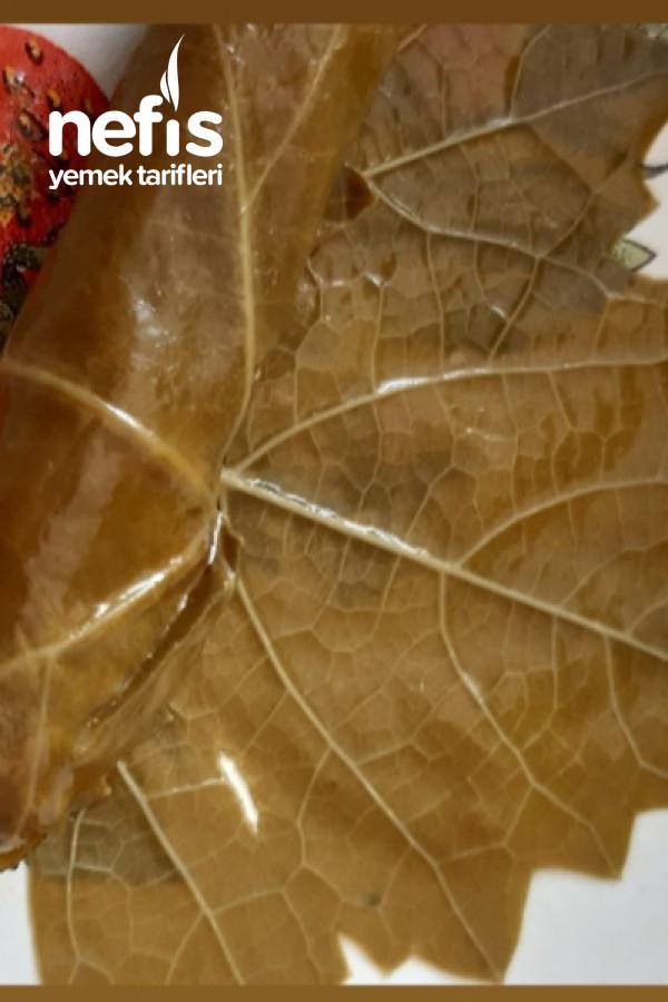 Zeytin Yaglı Yaprak Sarması