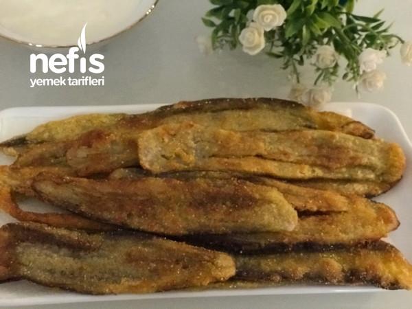 Patlıcan Balığı