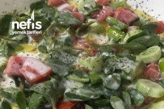 Semizotlu Soğuk Salata (Çok Fresh) Tarifi