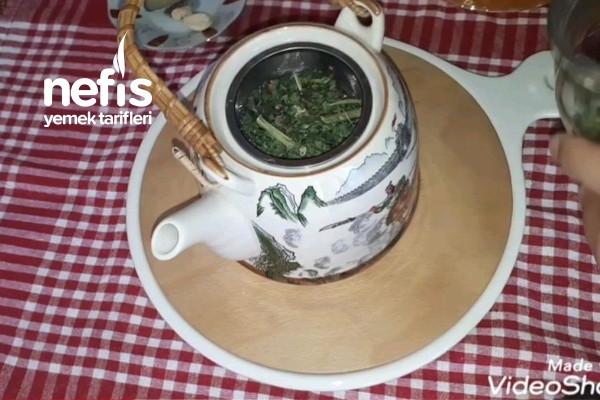 Isırgan Çayı (fibromiyalji ağrı cayi)