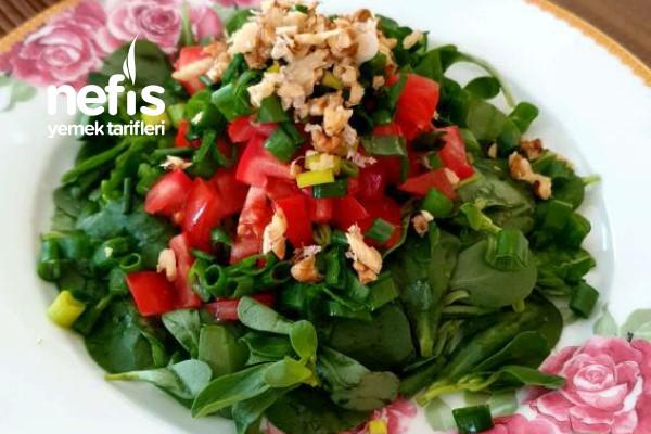 Özel Soslu Semizotu Salatası Tarifi