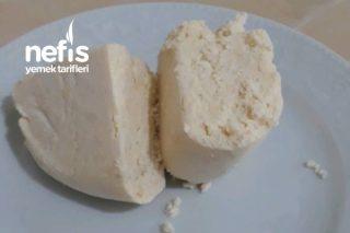 Kesilmiş Sütten Peynir Yapımı Tarifi