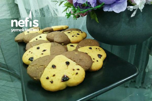 Dog Cookies (Köpek Kurabiyeler )