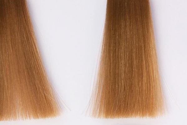 çörekotu yağı saç
