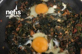 Ispanaklı Yumurta Tarifi
