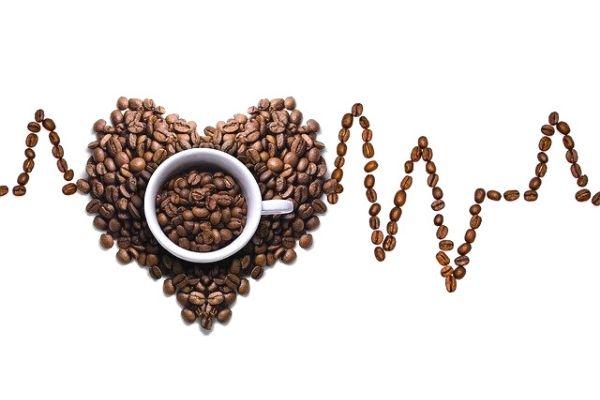 gano kahve özellikleri