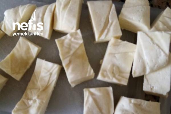 Evde Taze Peynir Yapımı Tarifi