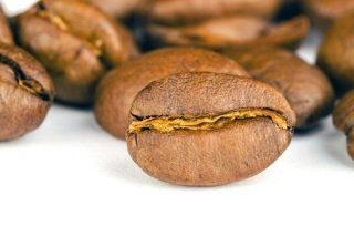 Nitelikli Kahve Çekirdeği Çeşitleri, Özellikleri Tarifi