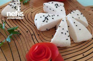 Peynir Yapımı (Kesinlikle Deneyin) Tarifi