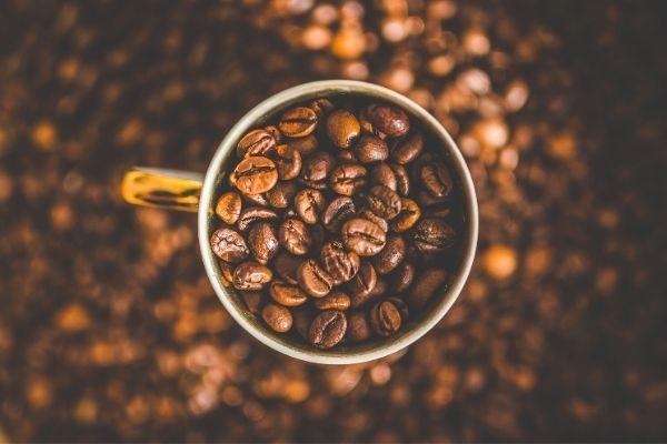kahve nesilleri