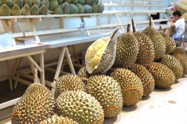 durian meyvesi fiyat