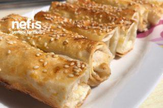 Teremyağlı Peynirli Börek Tarifi