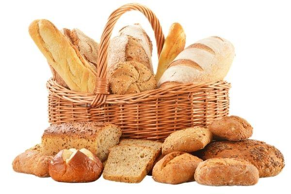 temel besin grupları