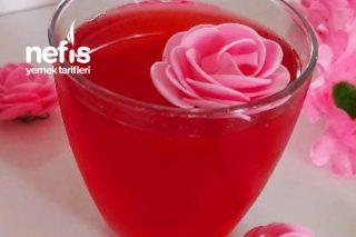 Kırmızı Erik Meyve Suyu (Kendin Yap Sağlıklı Yaşa) Tarifi