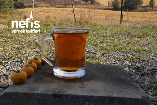 Kuşburnu Çayı Ve Kuşburnu Faydaları (Videolu)