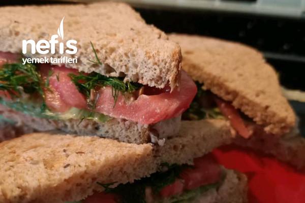 Ton Balıklı Sandwich