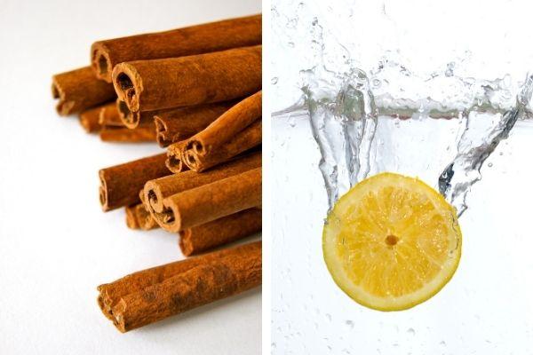 limon suyu tarçın