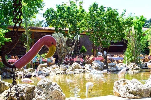 flamingo köy kahvaltı ücreti