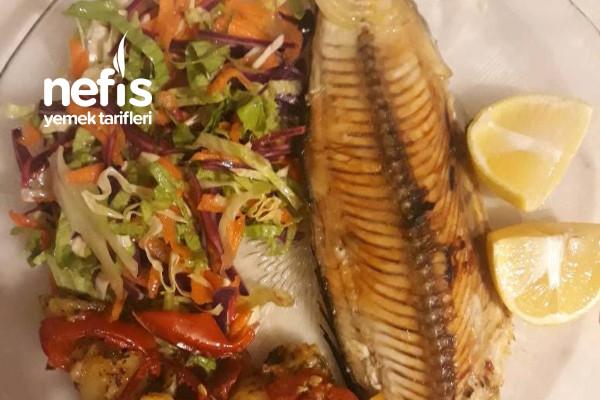 Fırında Balık (Palamut) Tarifi