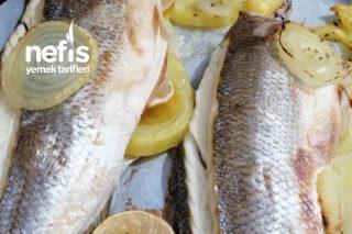 Enfes Şipşak Balık Tarifi