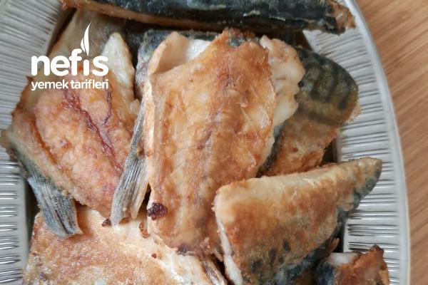 Tavada Balık (Kokusuz Ve Yapılışı Kolay)
