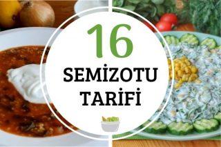 Semizotu Nasıl Yapılır? En Lezzetli 16 Semizotu Tarifi