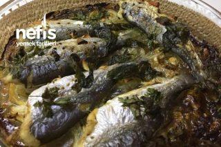 Mezgit Soslu Fırında Balık Tarifi