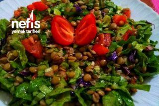 Yeşil Mercimekli Fit Salata Tarifi