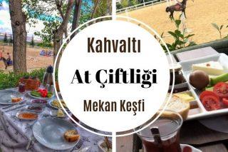 İstanbul'da En İyi 7 At Çiftliği ve Kahvaltı Tarifi