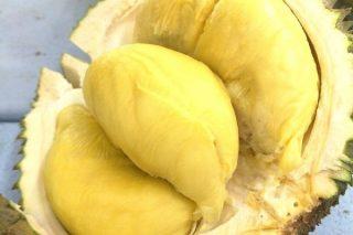 Jack Fruit: Dünyanın En Büyük Meyvesi! Tarifi