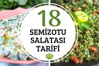 Semizotu Salataları: Değişik ve Pratik 18 Tarif Tarifi