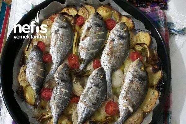 Filiz'in Mutfağı Tarifi