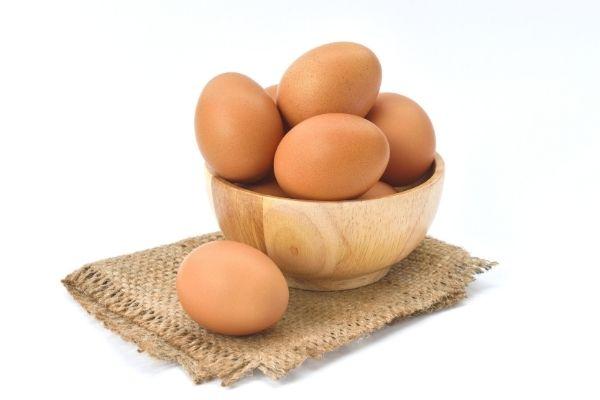 yumurta üzerindeki kodlar