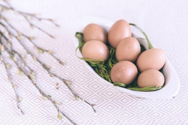 yumurta kodu anlamı