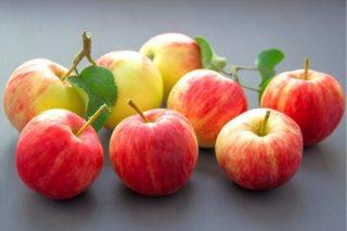 Elmanın Faydaları: İlk Kez Duyacaksınız! Tarifi