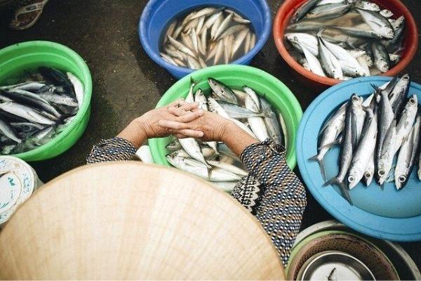 taze balık nasıl anlaşılır