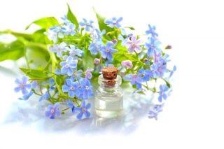 Mavi Anemon Çiçeği Yağı Faydaları, Kullanımı Tarifi