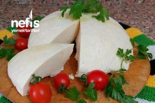 Peynir Yapımı (Evdeki Malzeme İle) Tarifi