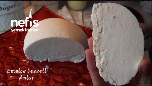 Hem Taze Hem Salamura Peynir Yapıyoruz Otlu Peynir Yapılışı