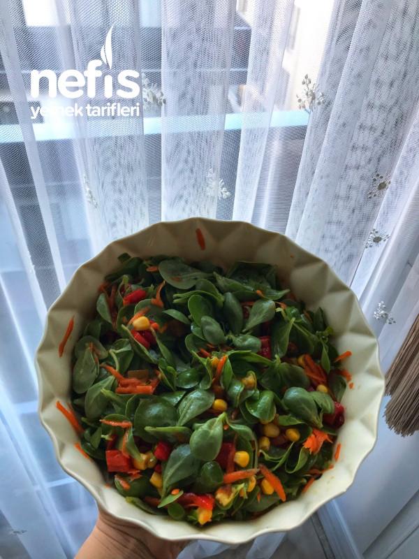 Kırmızı Biber Turşulu Semizotu Salatası