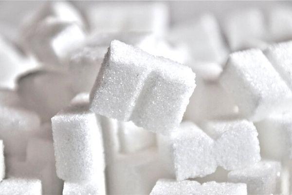 kıtlama şeker makası