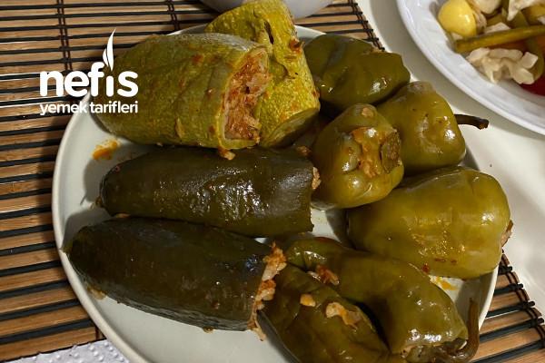 Taze Dolma (Salatalık, Biber, Kabak)