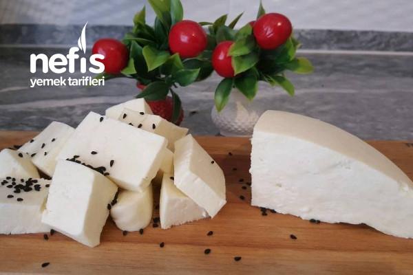 Ev Yapımı Mayasız Peynir