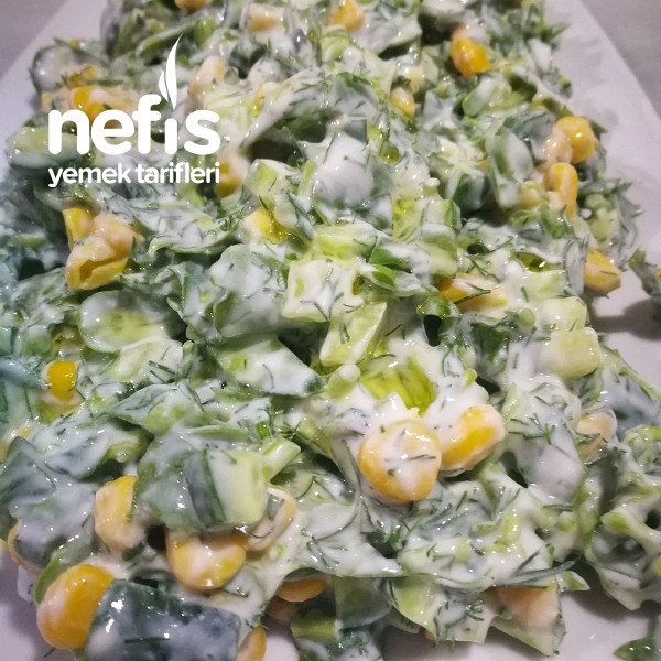 Yoğurtlu Semizotu Salatası